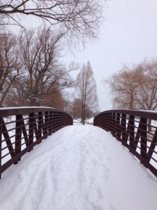 arboretum bridge in winter